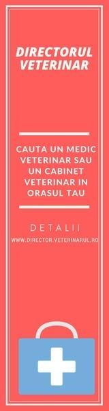 Directorul Veterinar cu toate cabinetele medicale veterinare