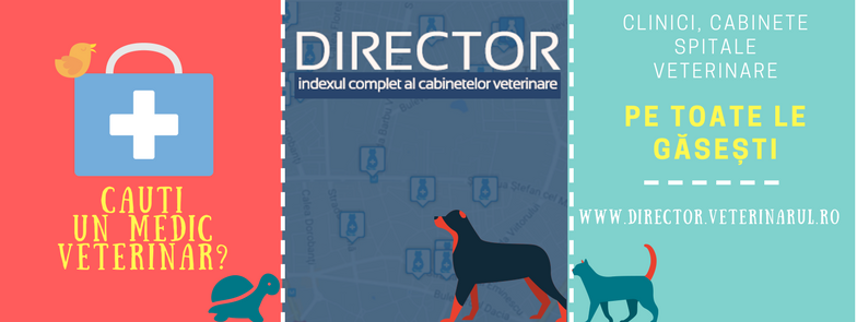Indexul complet al cabinetelor veterinare